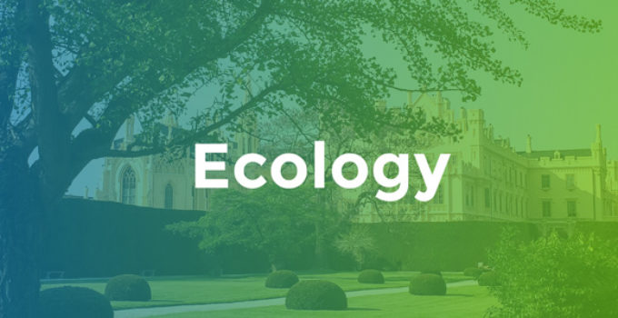 Ecology - Environment & Non-Profit