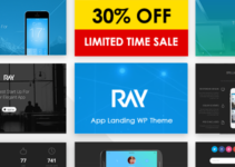 Ray - App Responsive WordPress Theme