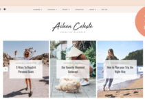 Aileen - A Personal Blog & Shop Theme