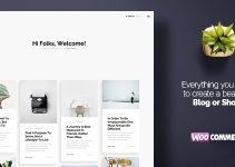 Caprisa - Personal WordPress Blog & Shop WooCommerce Theme