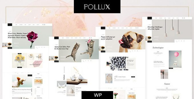 Pollux - Blogs & Magazines Clean Theme